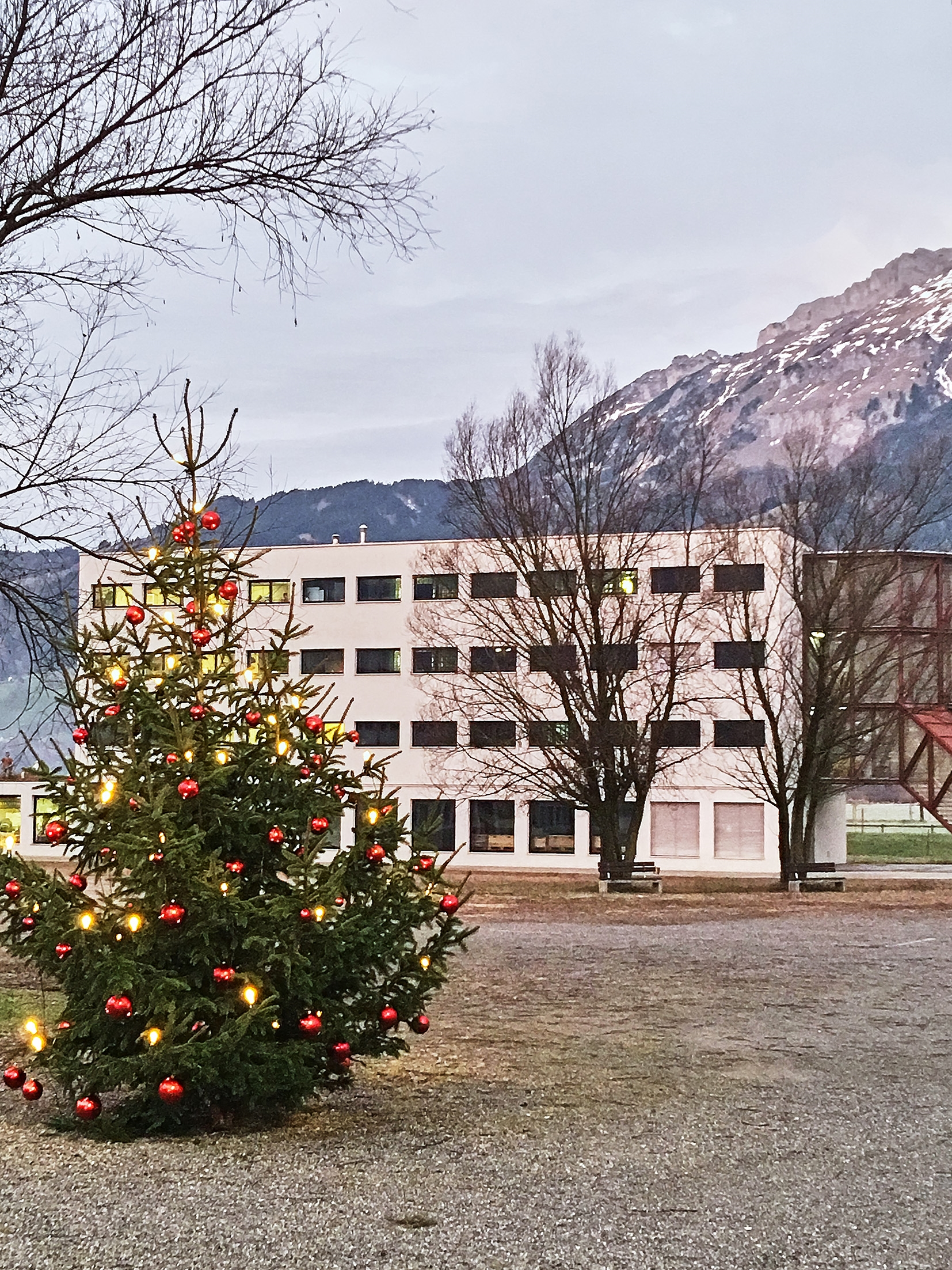 Christbaum vor der Strafanstalt Saxerriet in Salez